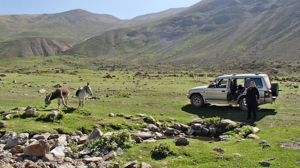 کوهستانهای مشکین شهر - شهریور ۱۳۹۴