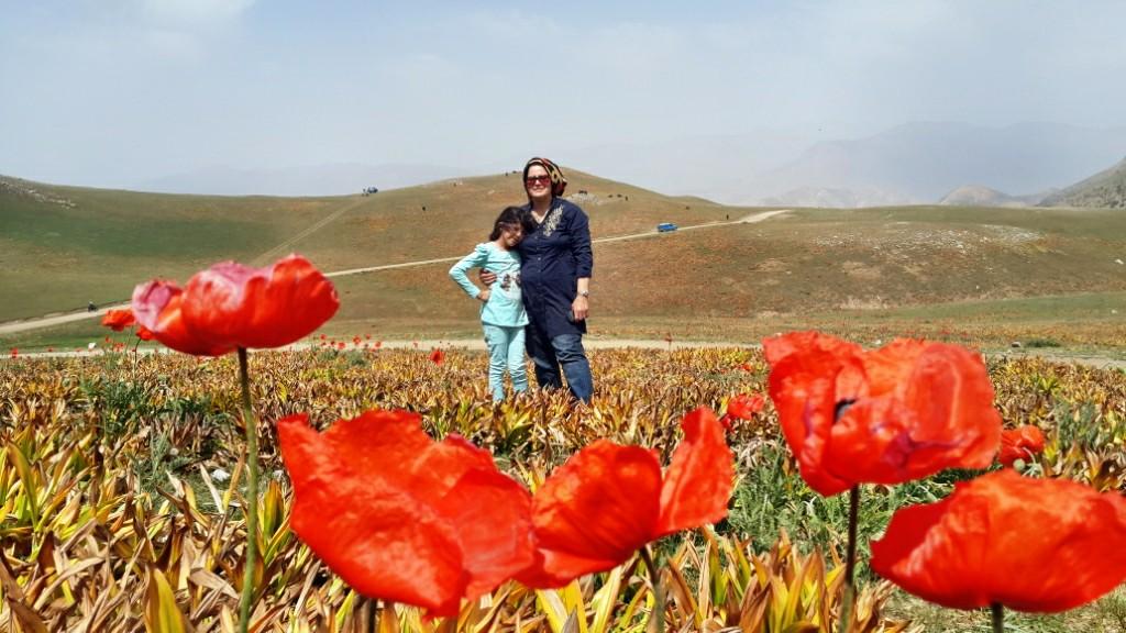 سفر به مناطق رویائی شالما ، اولسبلانگا و ماسوله – خرداد ۱۳۹۴