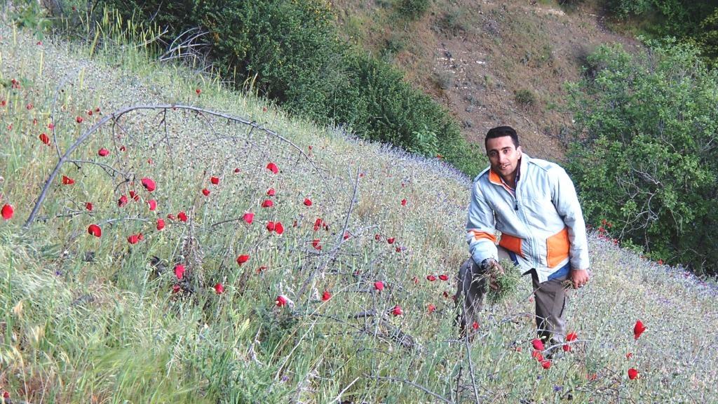 سفر به روستای اسفاران ، شمال غربی طالقان - بهار ۱۳۹۴