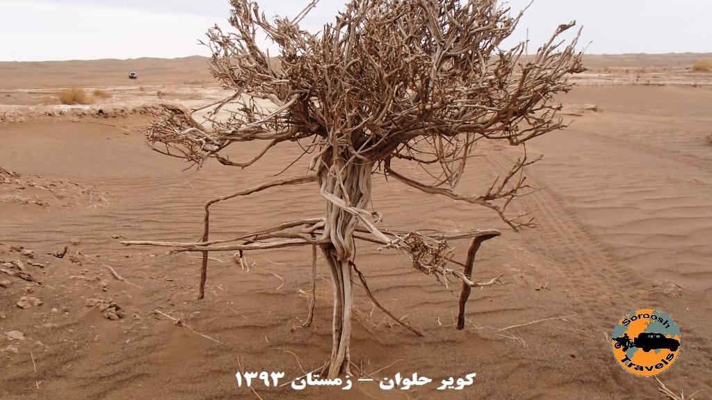 قدم به قدم در مسیر آلفونس گابریل - کویر حلوان - زمستان ۱۳۹۳