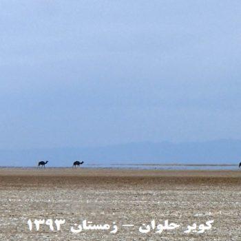 کویر حلوان - زمستان 1393