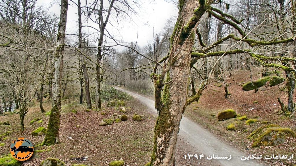 پاییز در ارتفاعات تنکابن – جاده 3000 – زمستان ۱۳۹۴