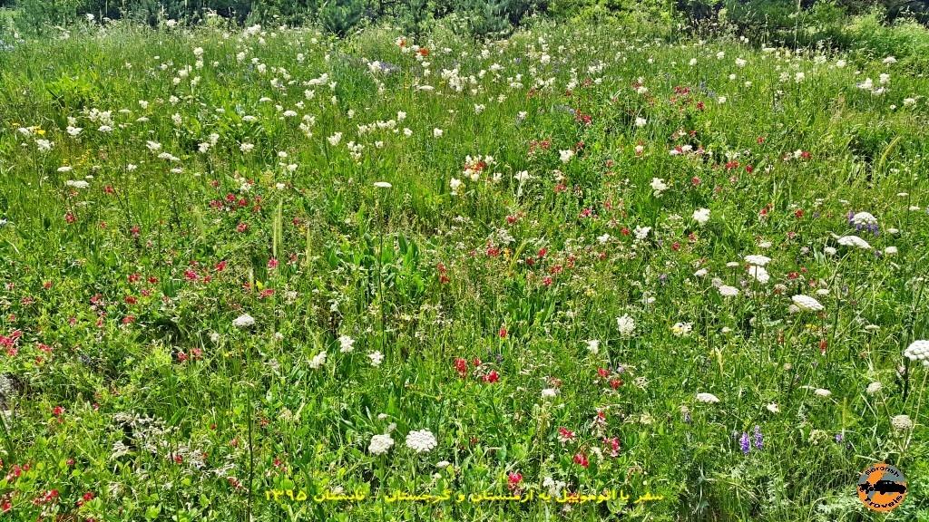 طبیعت زیبای اطراف جرموک - ارمنستان - تابستان 1395