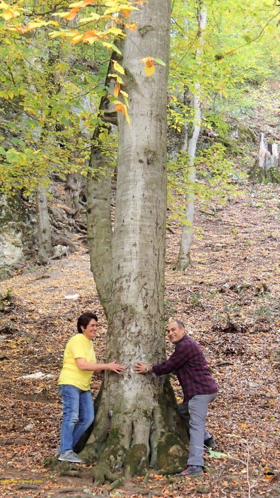 پاییز شگفت انگیز در روستای سنگده و آبشار اوبن - پاییز 1396