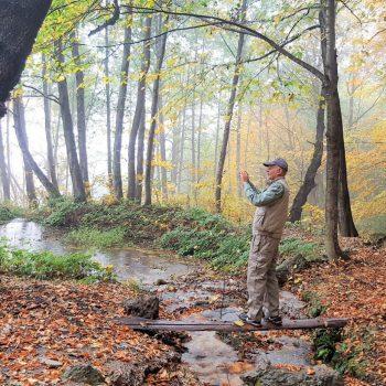 جنگلهای سنگده – پاییز ۱۳۹۶