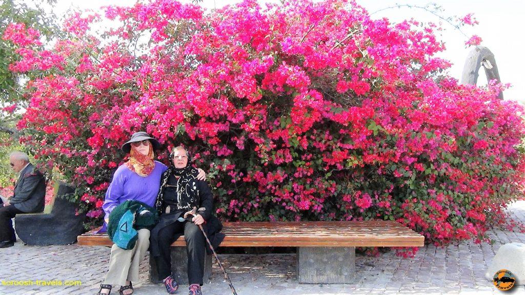 طبیعت زیبای جزیره کیش - پاییز 1393