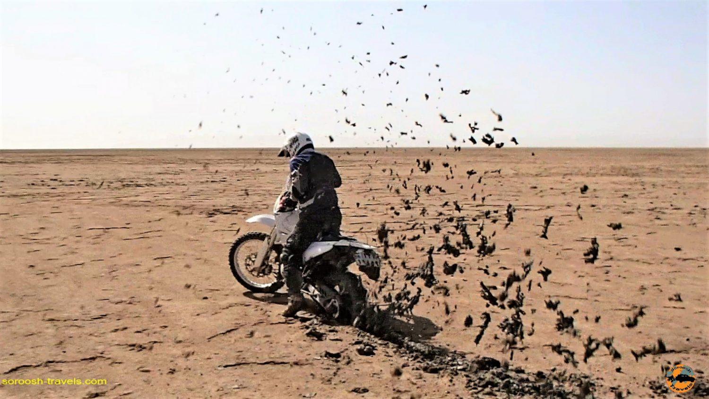 باتلاق با موتور در دریاچه نمک حوض سلطان - مهرماه ۱۳۹۳