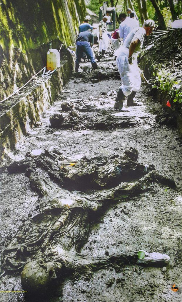 قربانیان نسل کشی بوسنی، سربرنیسا