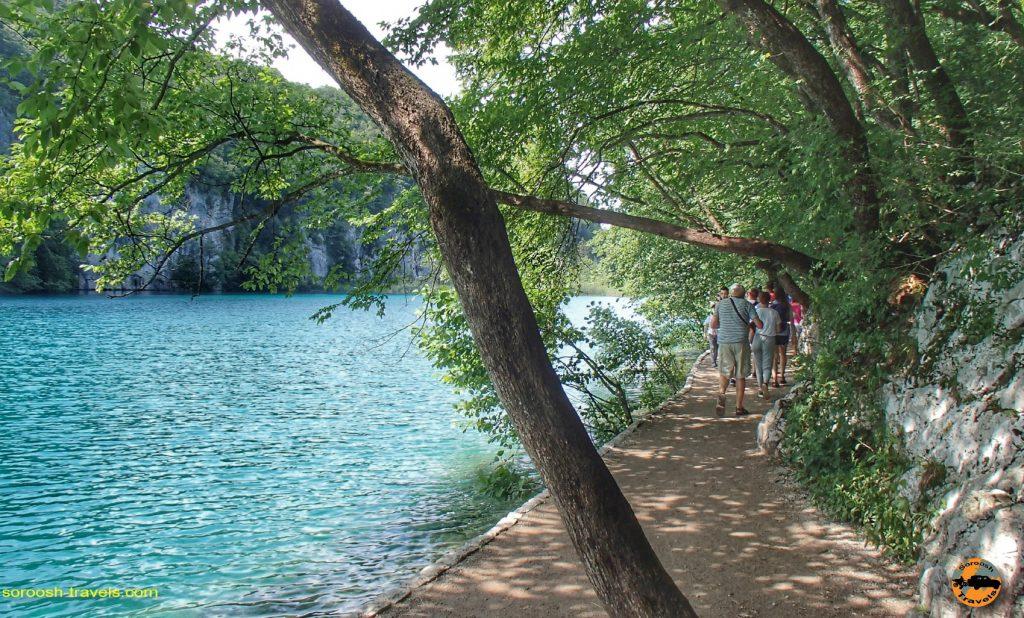 دریاچه های پلیت ویچه