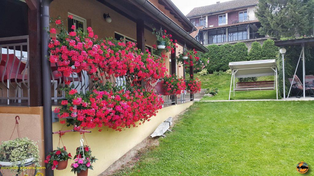 محوطه بیرون اقامتگاه ما در روستای کوشیچی - صربستان - تابستان 1397