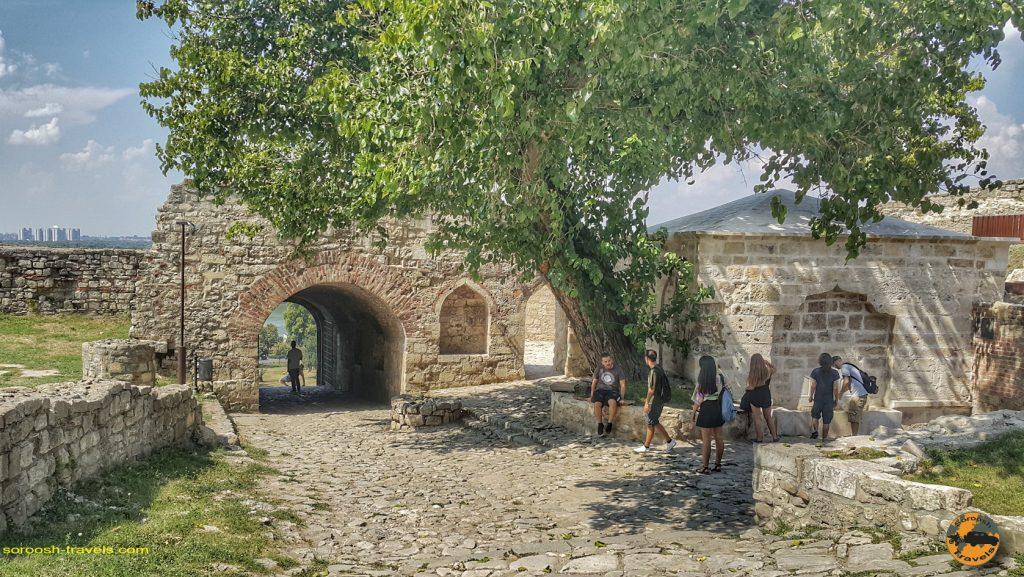 بلگراد، صربستان –  ۲۶ مرداد ۱۳۹۷