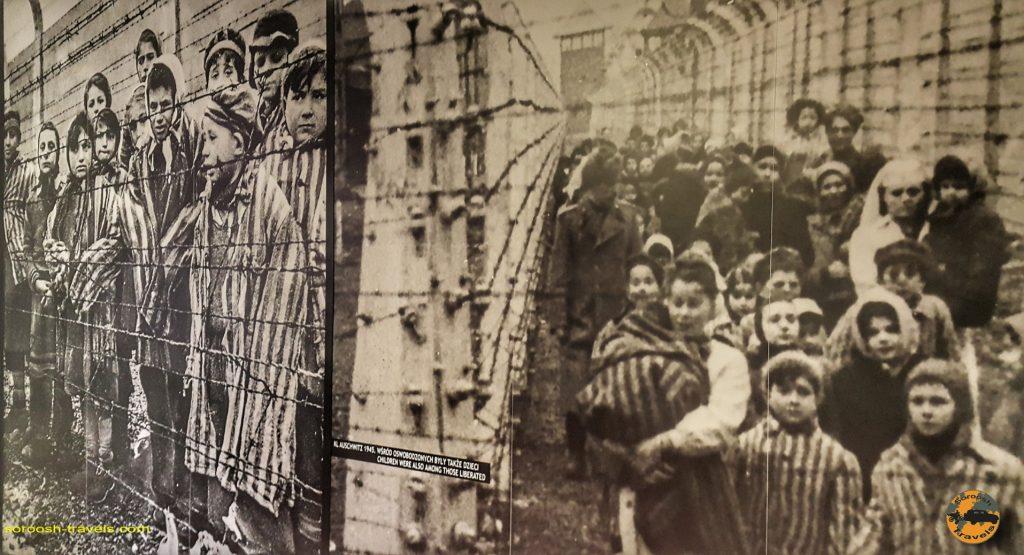 بازداشتگاه آشویتس - تابستان 1397