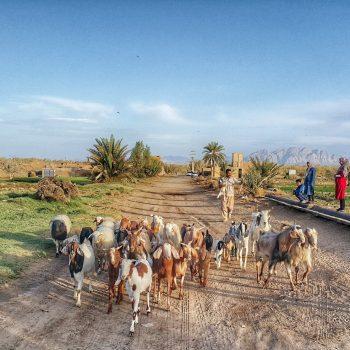 روستای آشتیان - حاشیه کویر ریگ جن