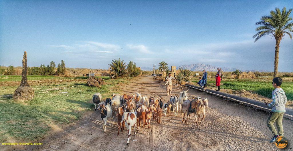 روستای آشتیان – حاشیه کویر ریگ جن – نوروز ۱۳۹۸