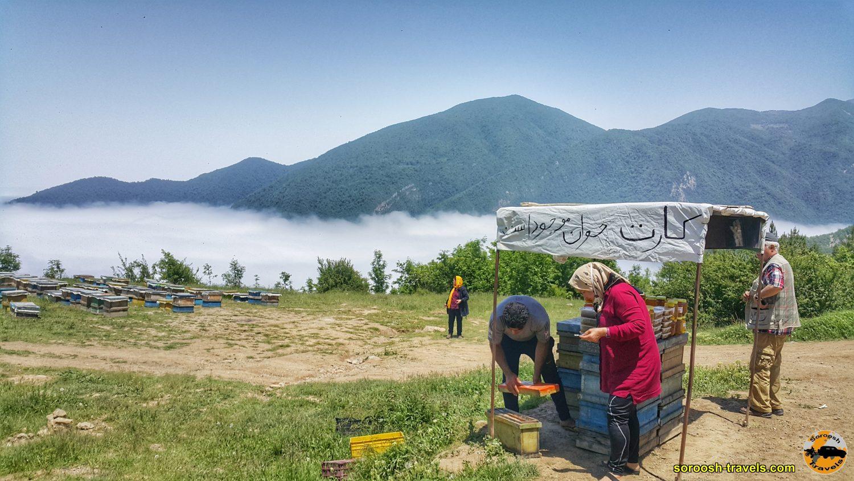 عسل فروشی در جاده شاهرود به توسکاستان - بهار 1399 2020