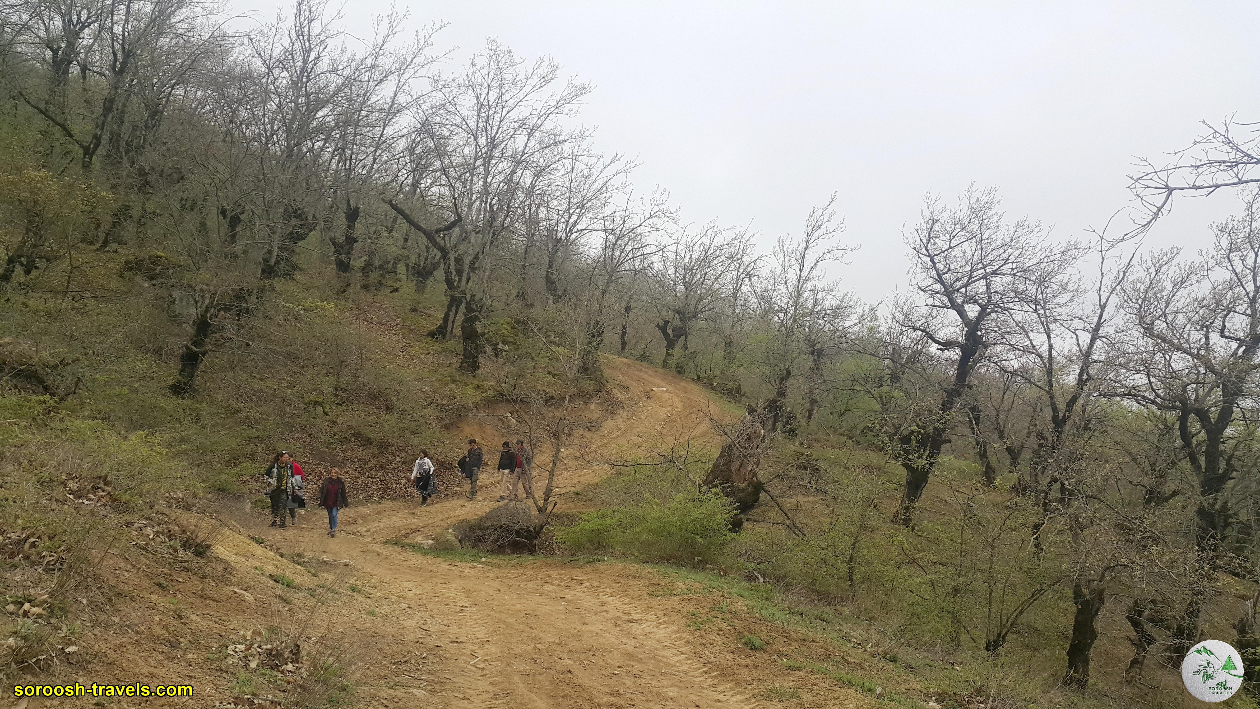 پارک ملی گلستان در منطقه ترکمن صحرا - نوروز 1400