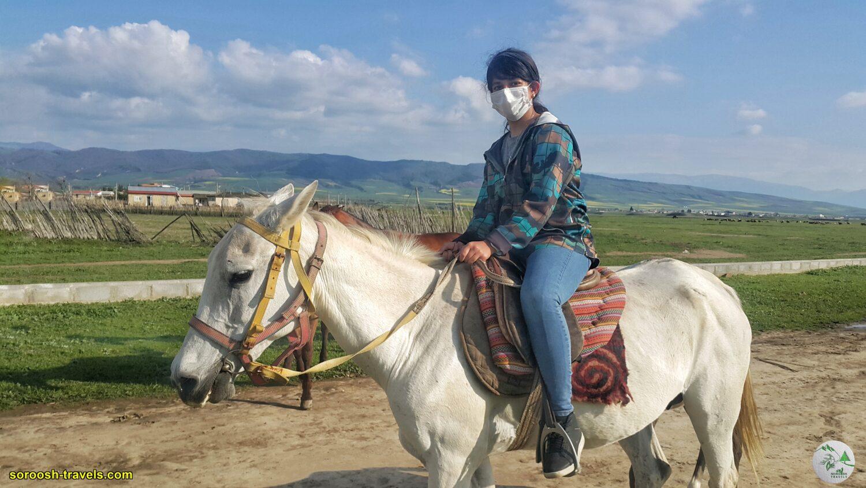 اسبهای زیبای ترکمن صحرا – نوروز 1400